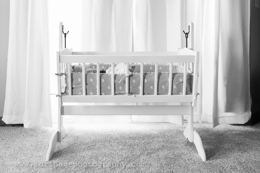 Ann Arbor family newborn photographer