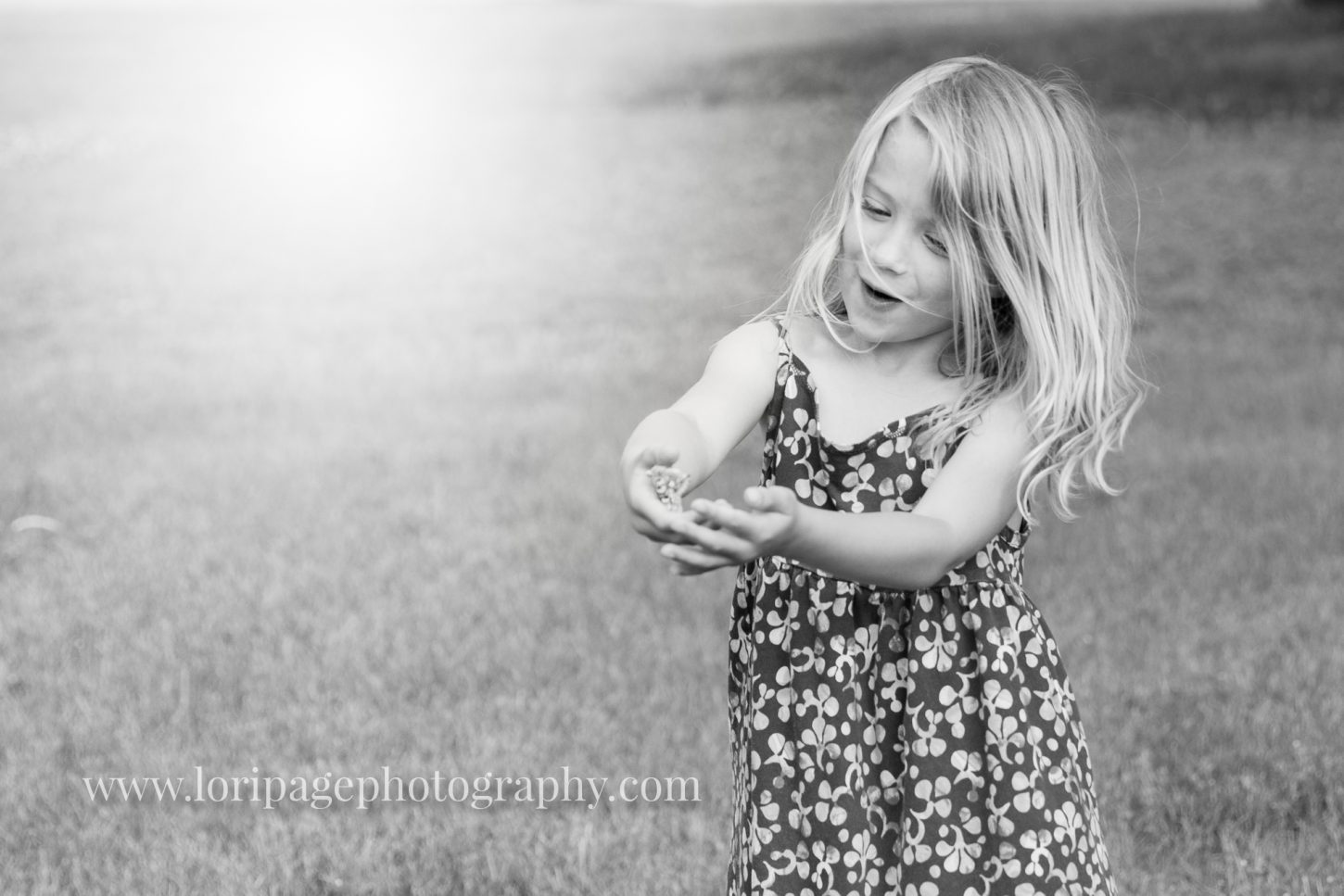 Ann Arbor family photographer