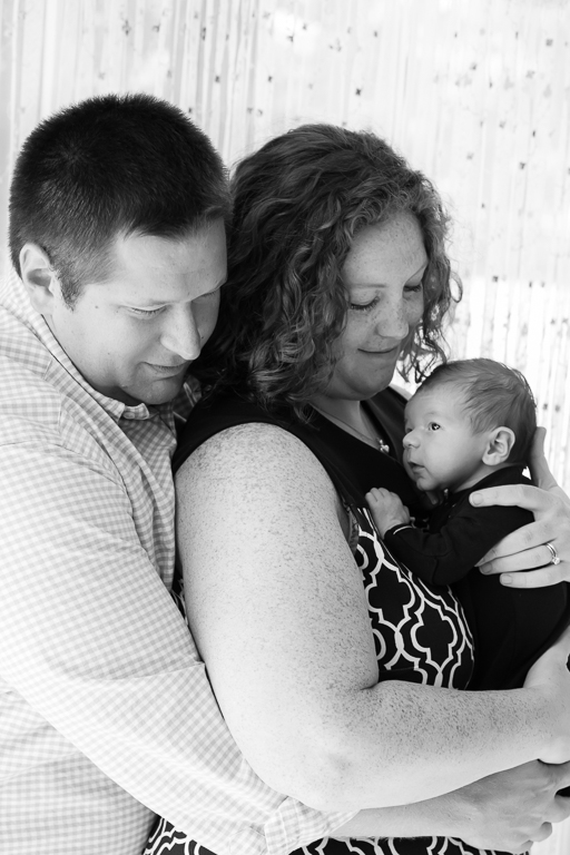saline mi newborn photographer
