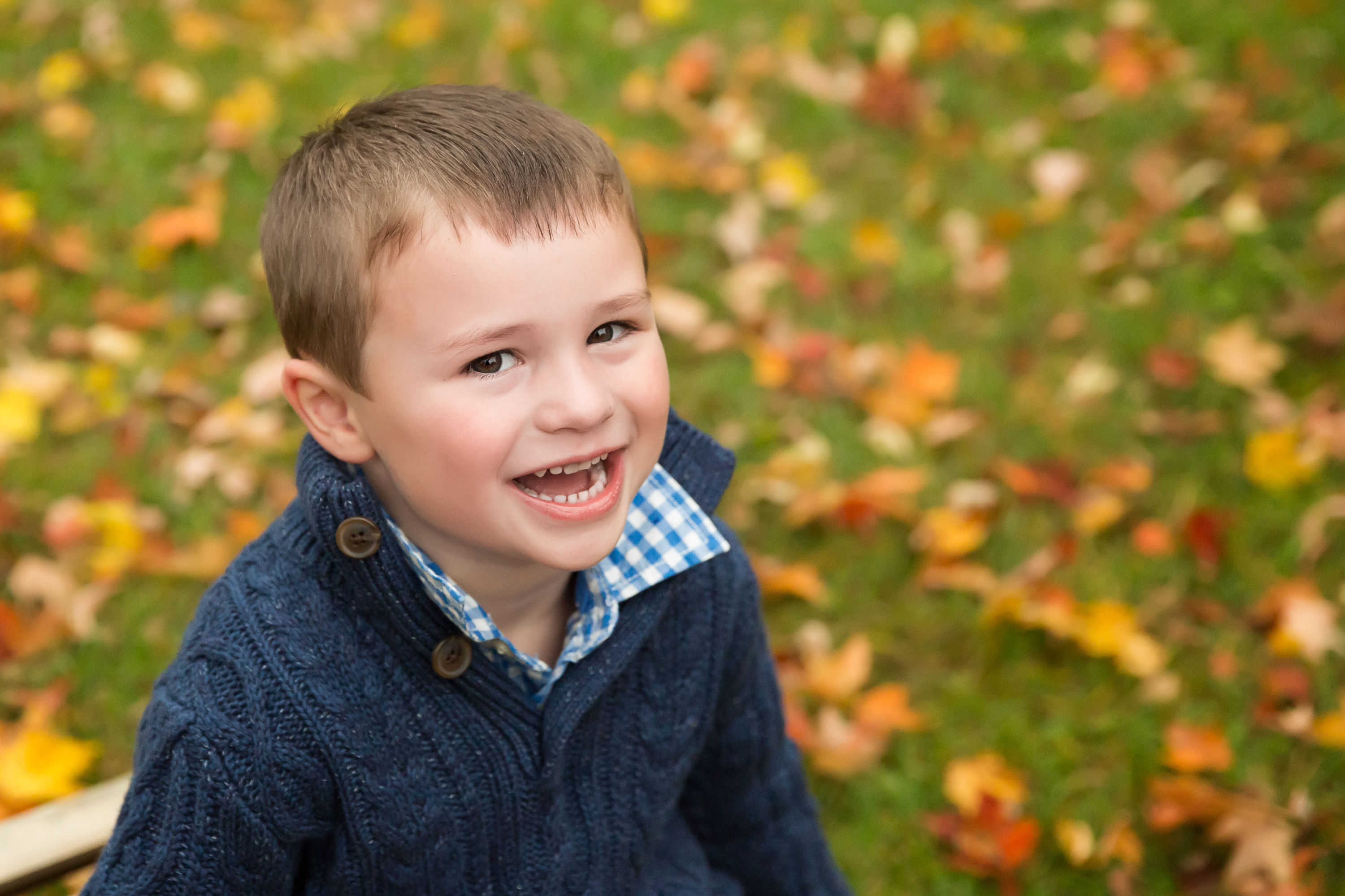 Fall Family Photographs {Dexter, Mi Family Photographer}
