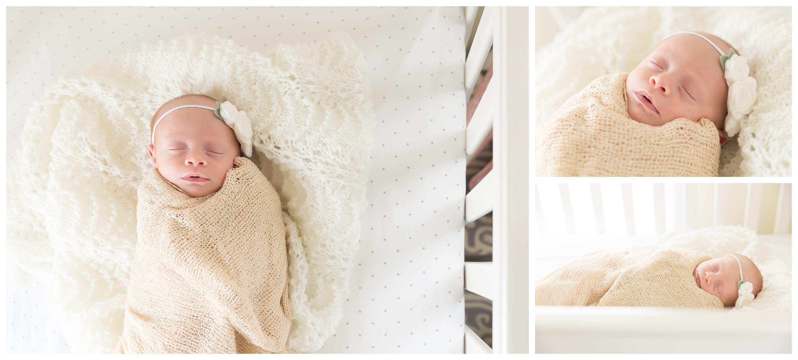 Teeny Tiny Newborn Girl | Ann Arbor Mi Baby Photographer
