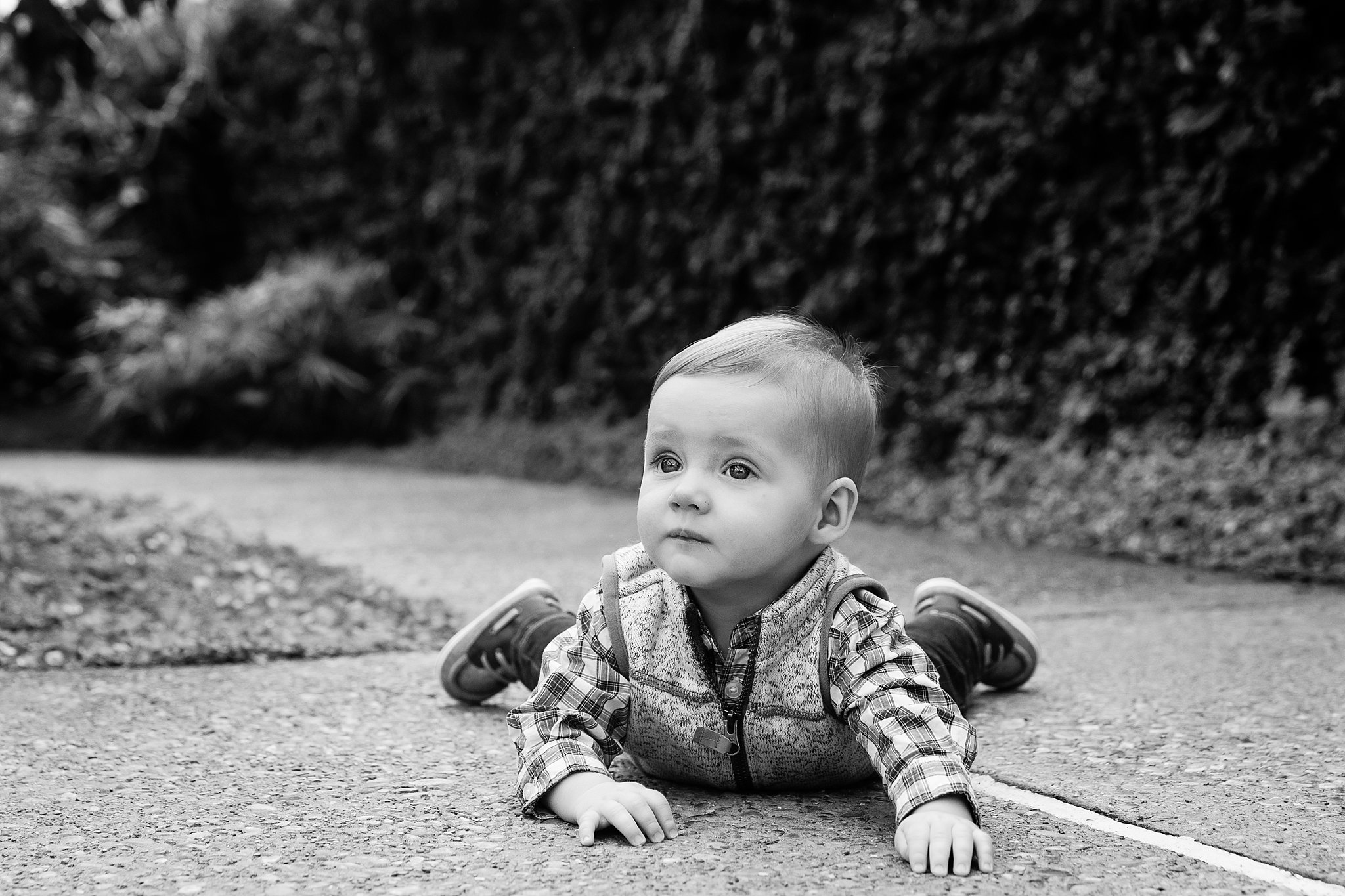 Six Month Portrait Session | Ann Arbor Family Pictures