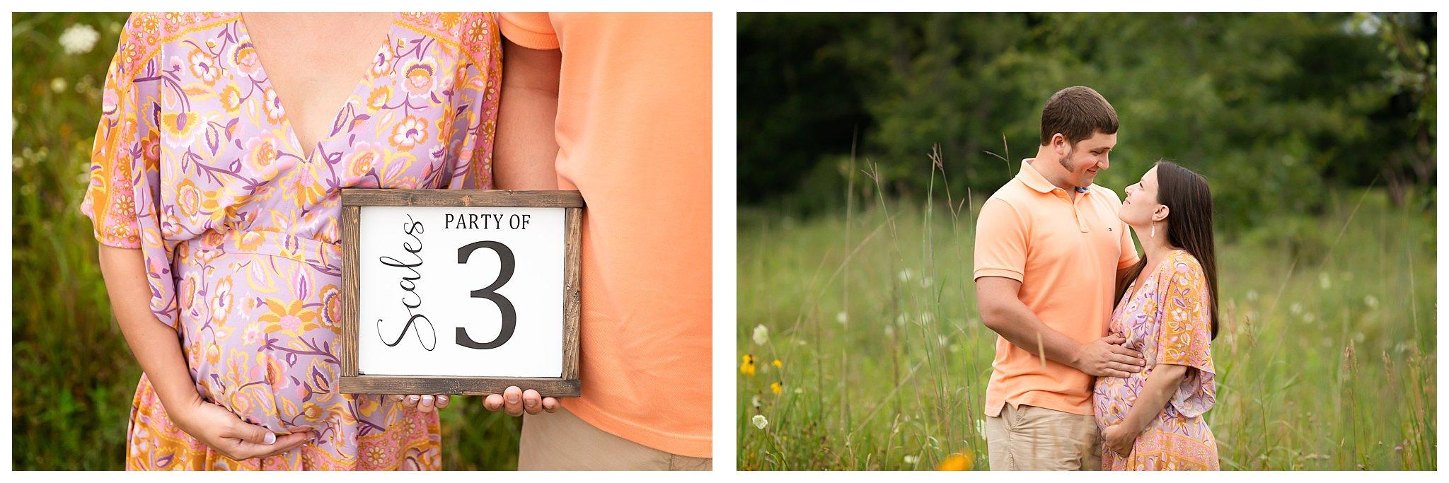 Ann Arbor Family Photographer   Pregnancy Announcement Photos