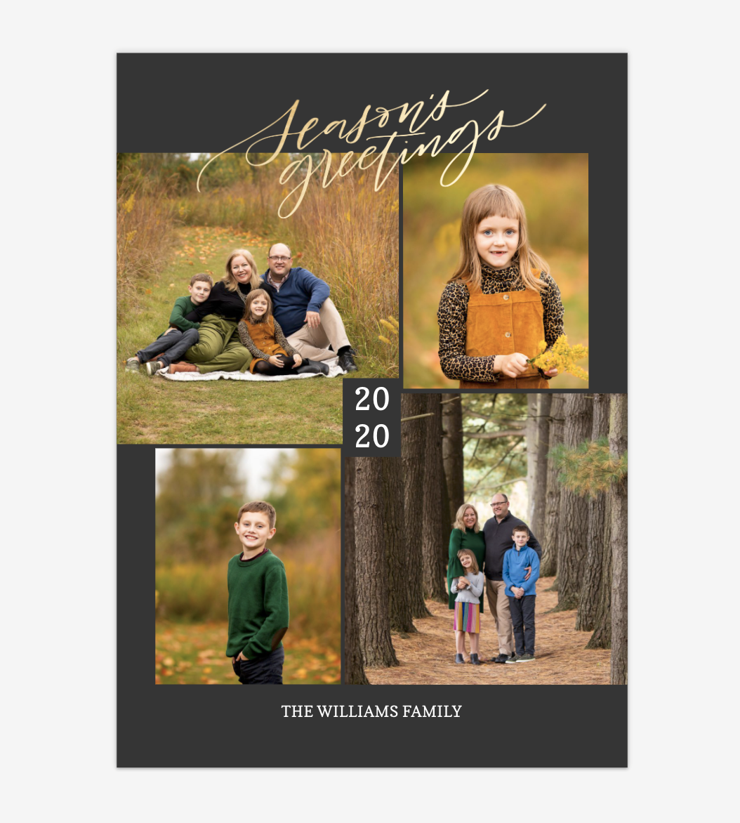 New Online Storefront for 2020 | Ann Arbor Family Photographer